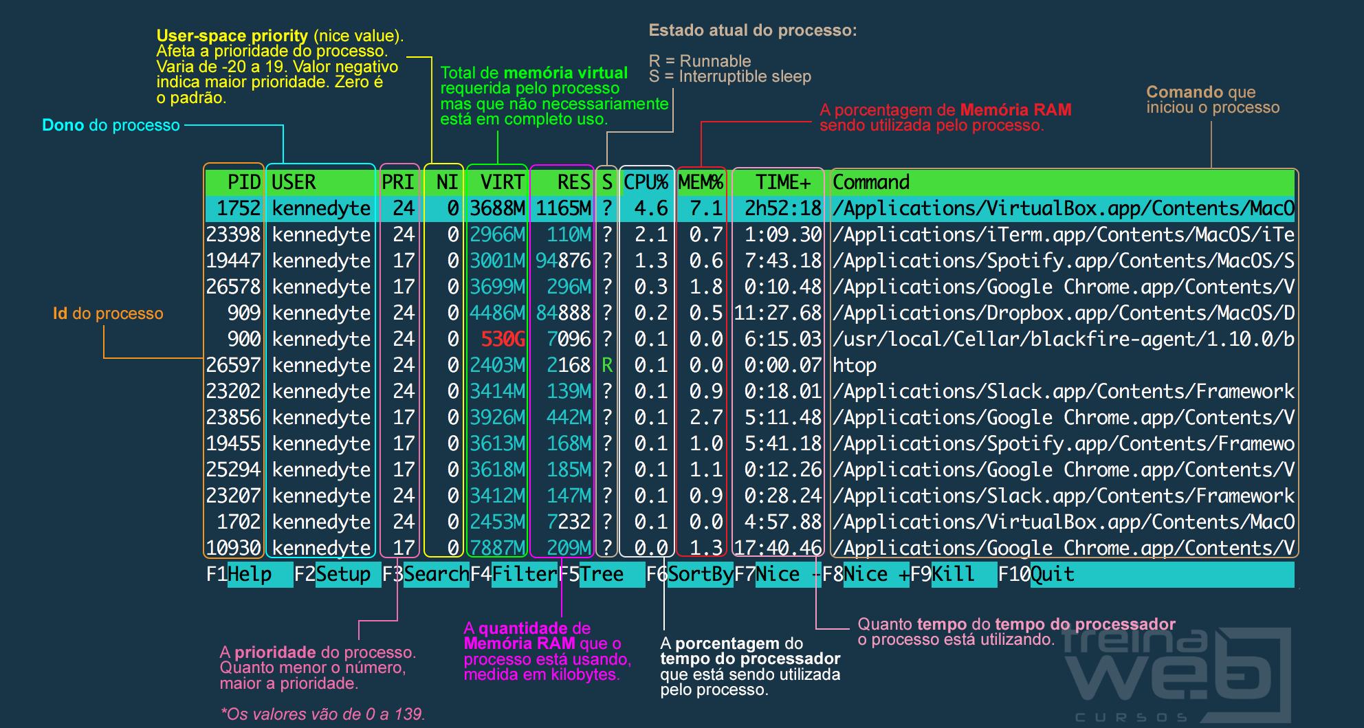 Tela do htop exibindo detalhes dos processos